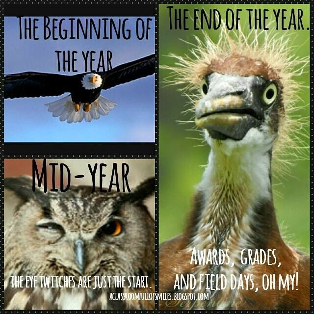 Image result for teachers beginning of year vs end of year