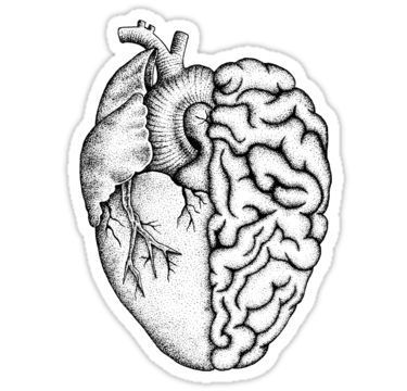 Heart and Brain Sticker by Kristian Nicho  Heart and Brain Sticker