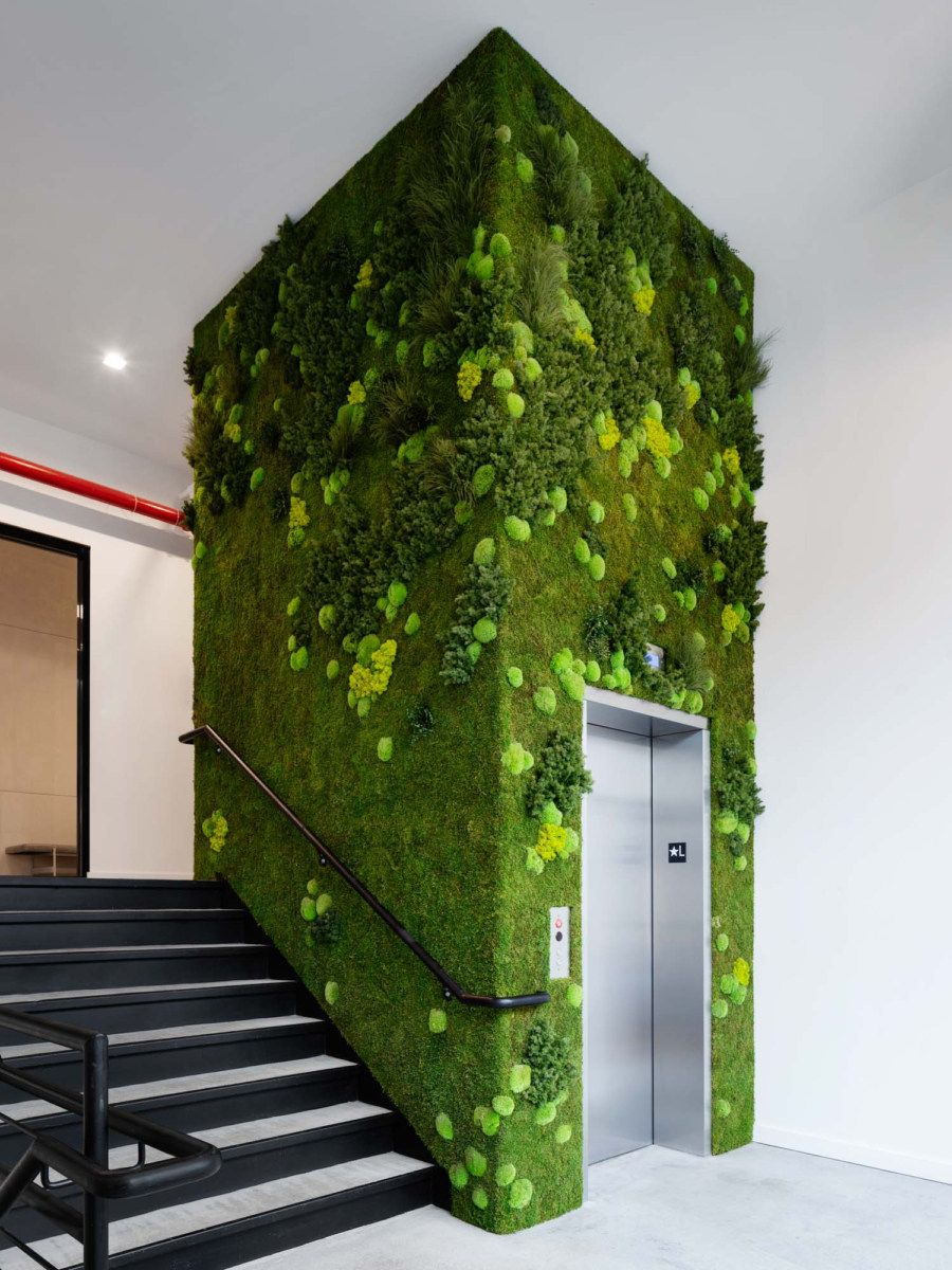 Wirecutter 01 Office Snapshots in 2020 Green wall
