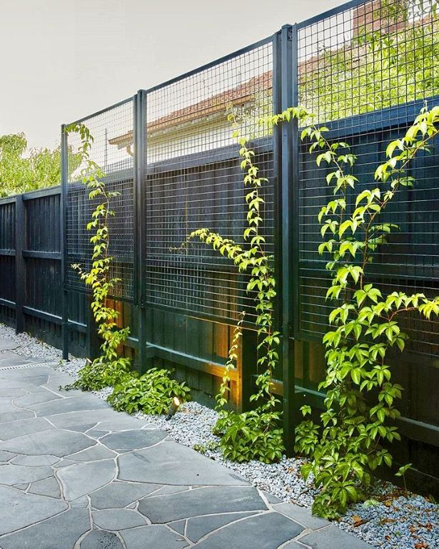 Great idea for garden screen fencing black fence green also best gardens images in backyard patio vegetable rh pinterest