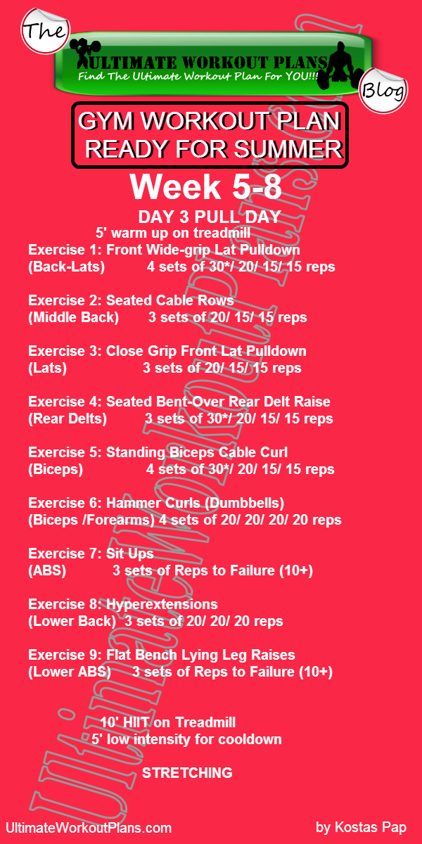 3 month women workout plan week 5 8 day 3 pull day free printable
