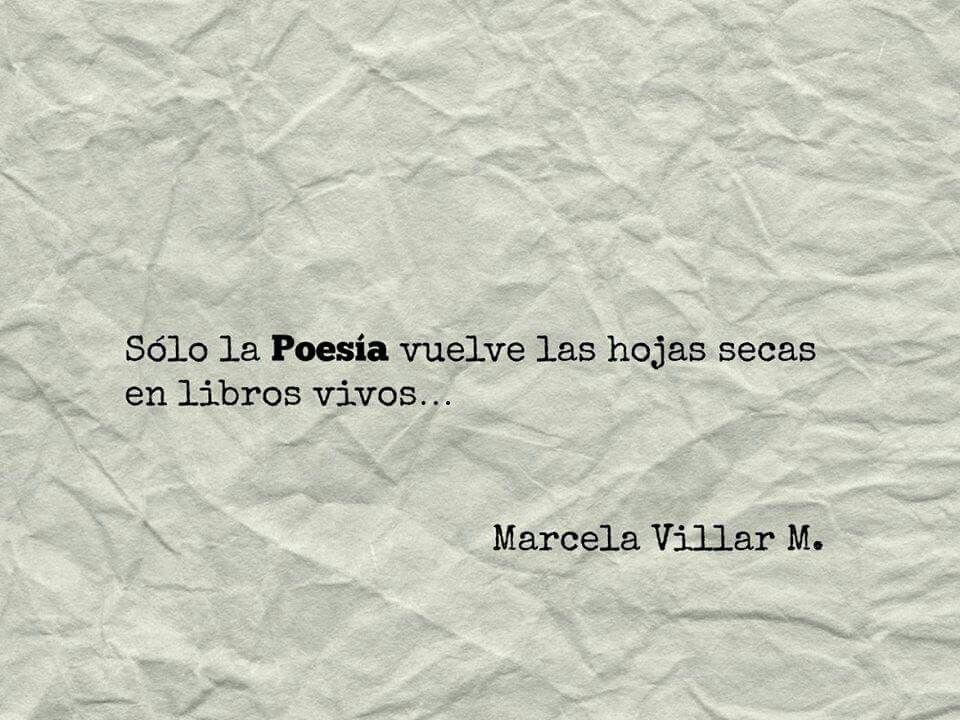 Marcela Villar