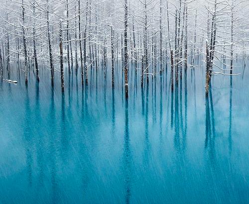 Fancy - The Blue Pond, Hokkaido -Japan ByKent Shiraishi | The Khooll