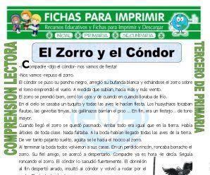 El Zorro Y El Condor Para Tercero De Primaria Writing Social Security Card Sayings