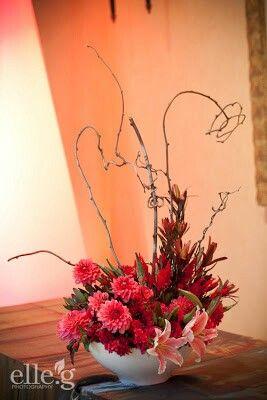 Twigs n Blooms ~ Coral.      Dahlias