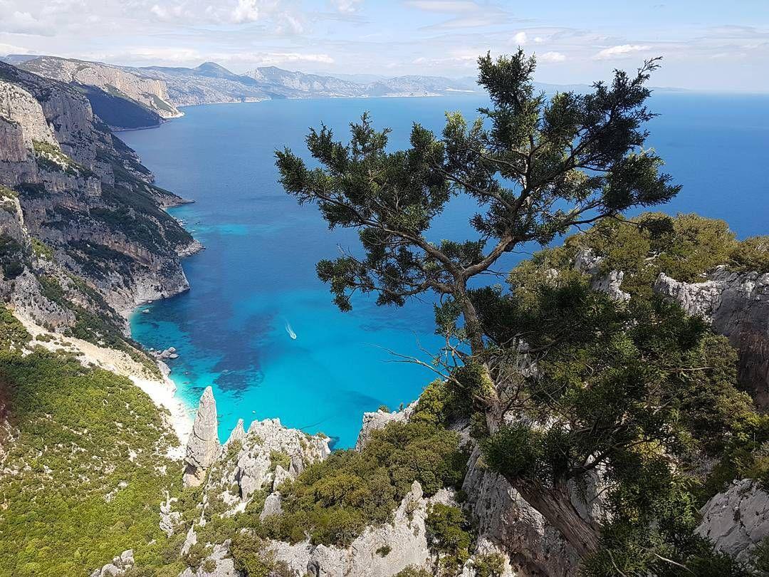 #escursione #goloritze #baunei #jebelsardinia #trekking #hiking #sardegna #sardinia #igersardegna #ig_sardegna #ig_sardinia #thehubsardegna #yellerssardegna #focusardegna #sardegnageographic #sardegna_super_pics #instasardegna #bestsardegnapics #volgo_sardegna #enjoytheblue #trip #travel #traveler #traveling #travelingram #instatravel #instatraveler #nature http://tipsrazzi.com/ipost/1513660268734109324/?code=BUBmf6khNaM