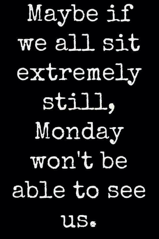 Avoiding Monday Funny Quotes Work Quotes Its Friday Quotes