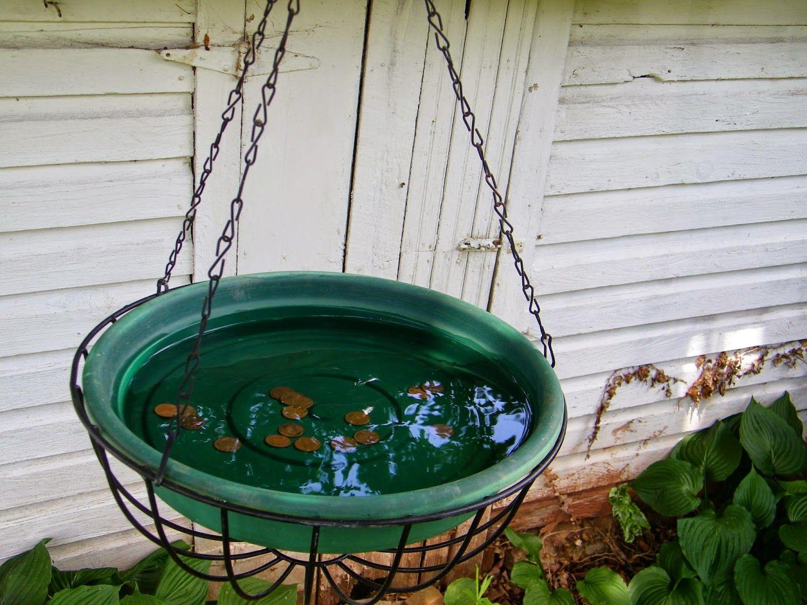 Unique bird baths diy bird bath ideas - Window Bird Bath