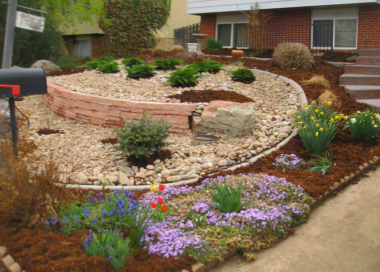 xeriscaping - Google Search | Xeriscape, House landscape ...