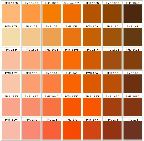 Pantone Colors In Orange | Orange Ingredients | Pinterest