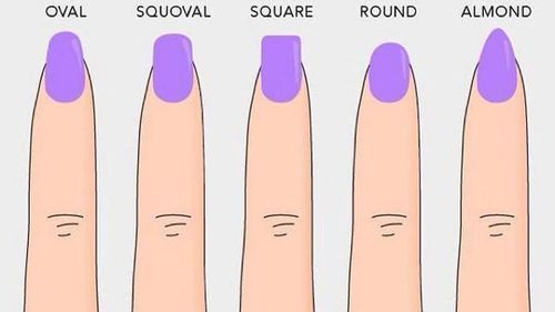 Type Of Nails Forms
