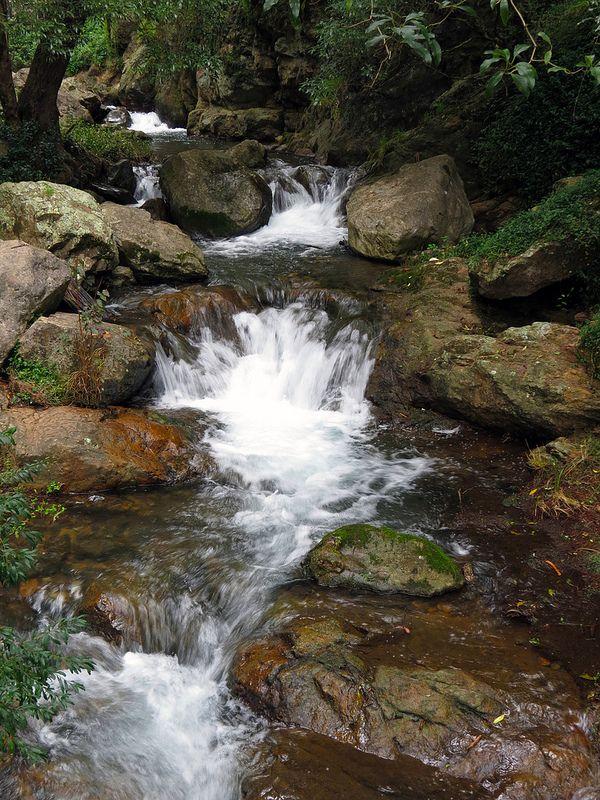 Stream RUISSEAUX Pinterest Cascadas, Mamá y Jardines - cascadas en jardines
