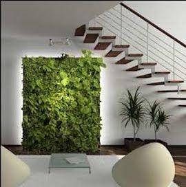 Econotas.com: Fabrica tu Jardín Vertical, Decora el Interior de tu Vivienda, Incluye Naturaleza a tu Vida