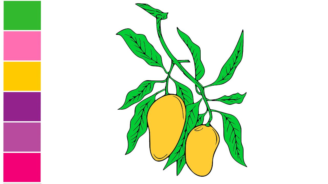 How To Draw A Mango How To Draw Mango Step By Step Mango Drawing
