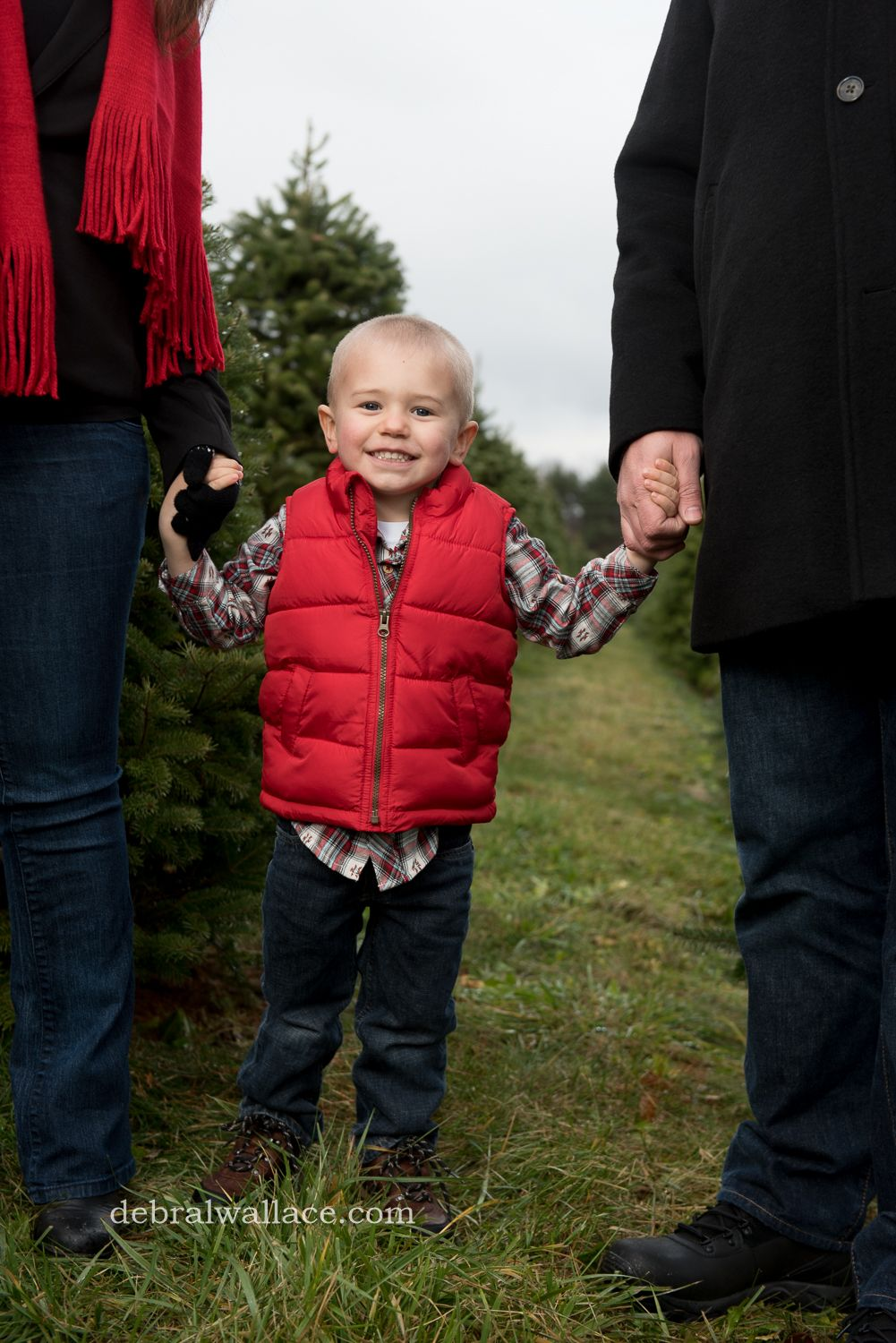 Christmas Tree Farm Family Christmas Photos | Clothing Ideas, Colors ...