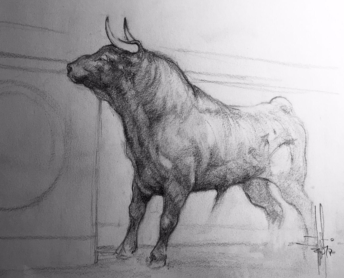 Francisco Javier Abellan Dibujo Toro Alerta A Lapiz Grafito
