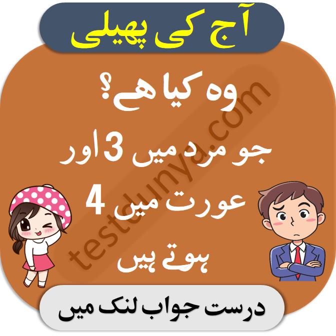 Pin on Riddles in Urdu