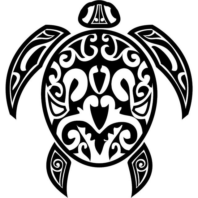 Native American Design Turtle Form Drawing Local Geographyhistory