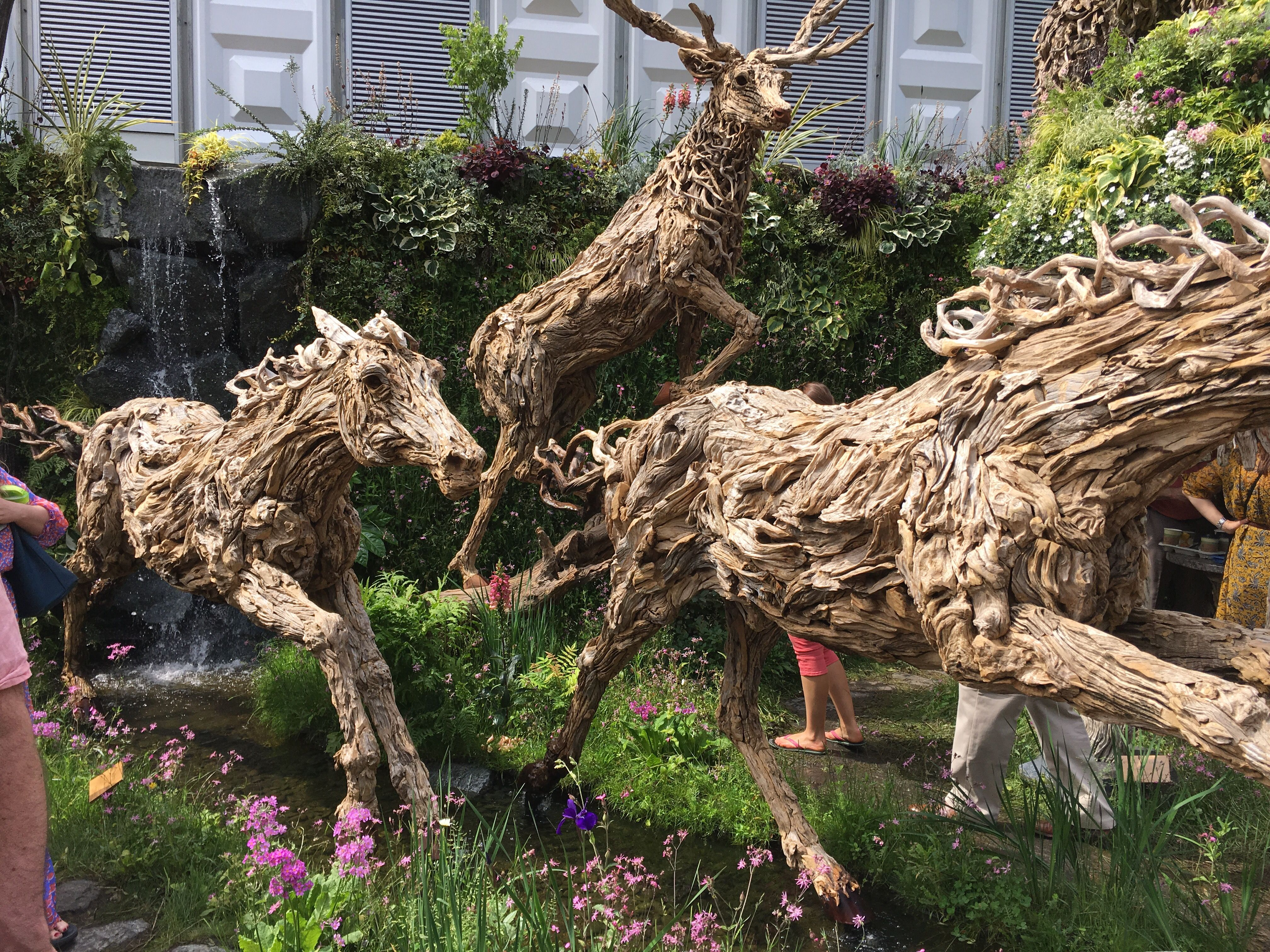 Chelsea flower show 2017 (With images) Flower show 2017