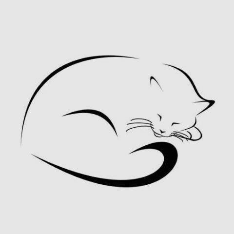 a sleeping cat s silhouette catsilhouette
