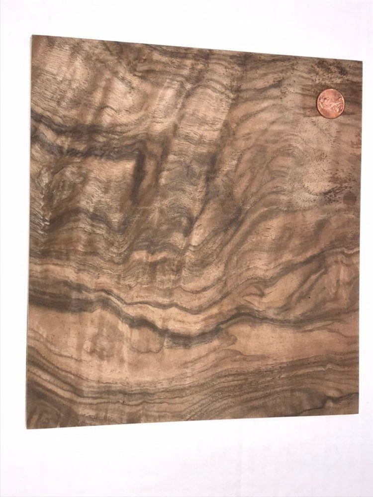 Circassian Walnut Burl Veneer On Plywood Sheet 8 X 8 5 Inches Wood Laminate Walnut Burl Veneers