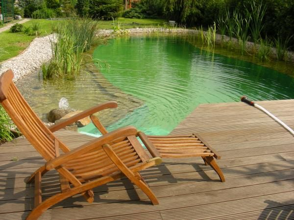 Swimming pond. This is my nature limit | Outdoor space | Pinterest ...