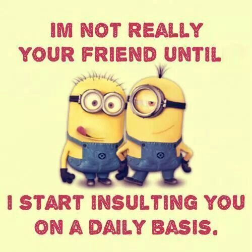 I'm Not Really Your Friend Until I Start Insulting You On A Daily Basis