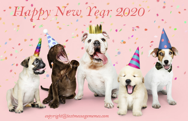 New Year Wishes 2020 New Year Sayings Text Message