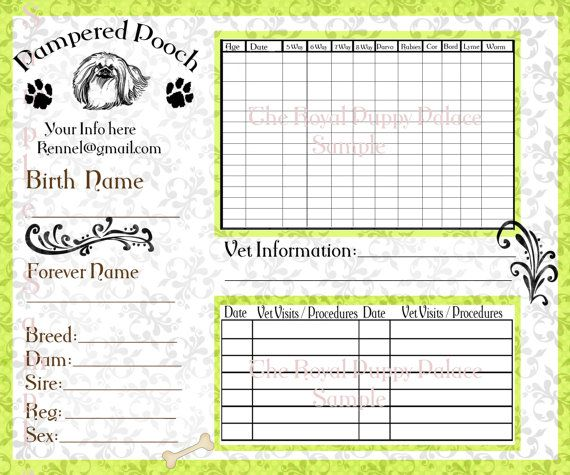 Pampered Pooch Green Customizable by RoyalsPuppyBoutique on Etsy
