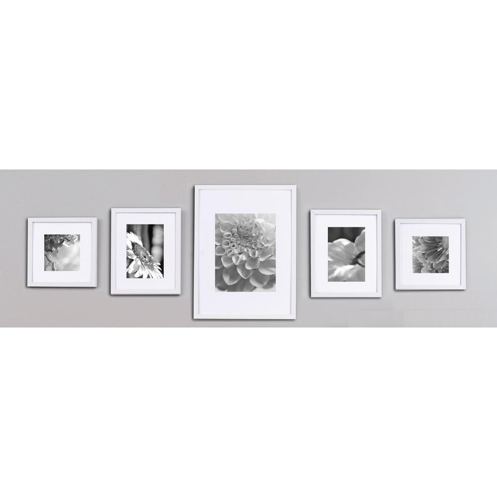 Pinnacle 5 Opening 8 In X 10 In Matted Picture Frame White Frames On Wall Frame Wall Decor Picture Frames