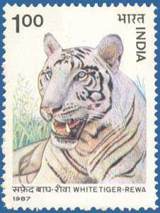 India 10 Rupees 2011 Letter S Gandhi Animal elephan Tiger Free Postage World