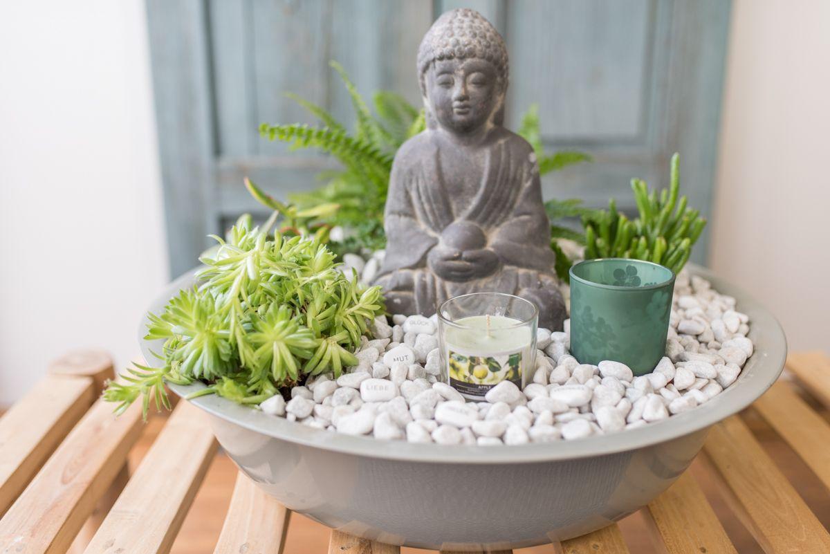 Diy Indoor Garten Im Asia Look Mit Sukkulenten Und Buddhafigur Als Wellnessoase Fur Zuhause Indoor Garten Buddha Garten Buddha Dekoration