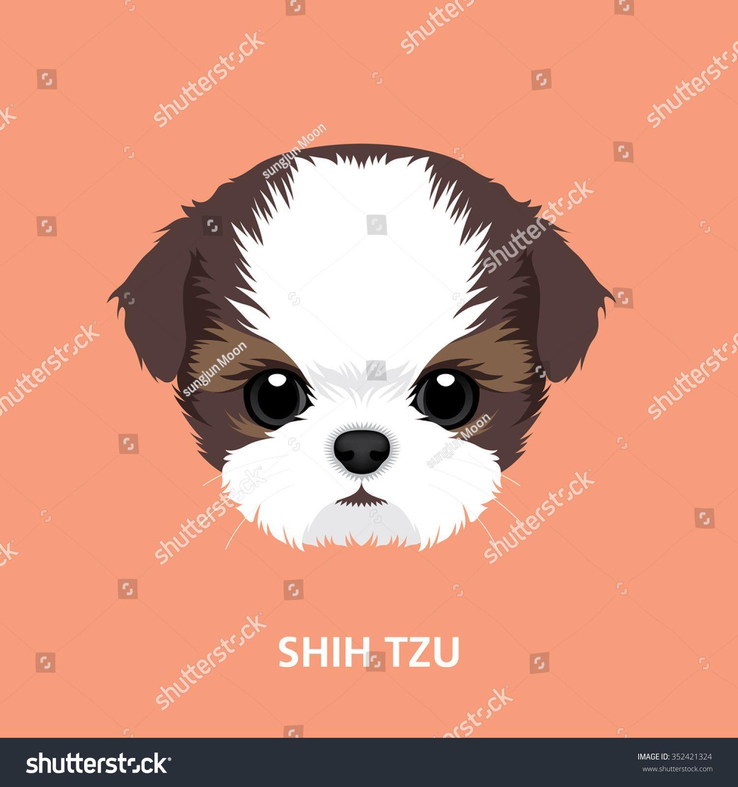 Vector Illustration Portrait Of Shih Tzu Puppy Art Of Dog Face