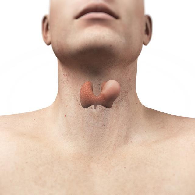 Pin on Blood Cancers: Leukemia and Lymphoma