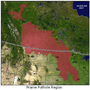 Prairie Pothole Region map | academic | Habitats, North america on
