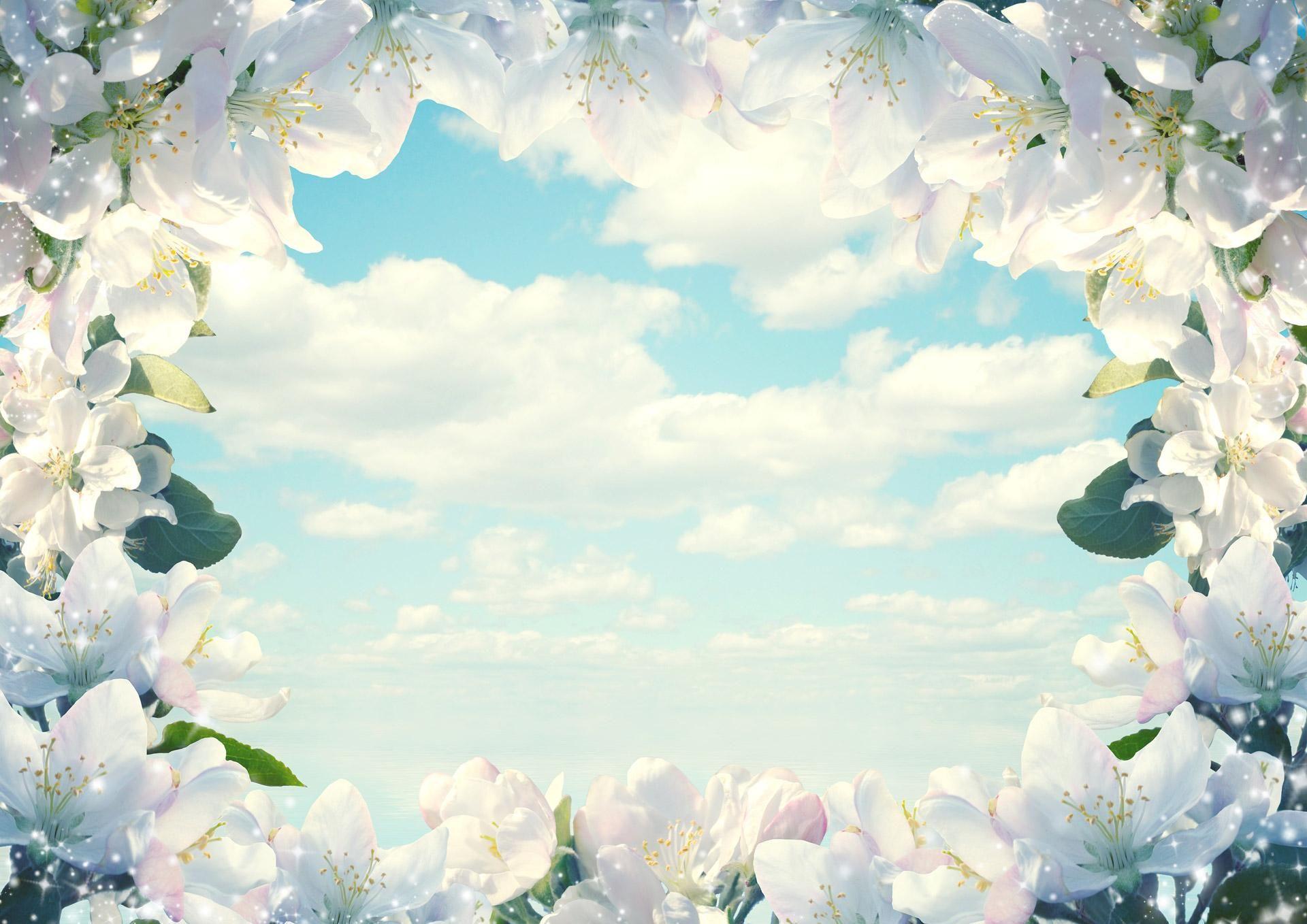 Fantastic Frame Of Flowers Download Hd Pictures Wallpaper Name Wallpaper Landscape Wallpaper Framed Wallpaper