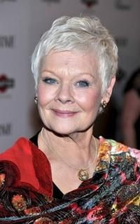 the lovely dame judi dench stars over 50 loving life pinterest wei es haar frisuren und. Black Bedroom Furniture Sets. Home Design Ideas