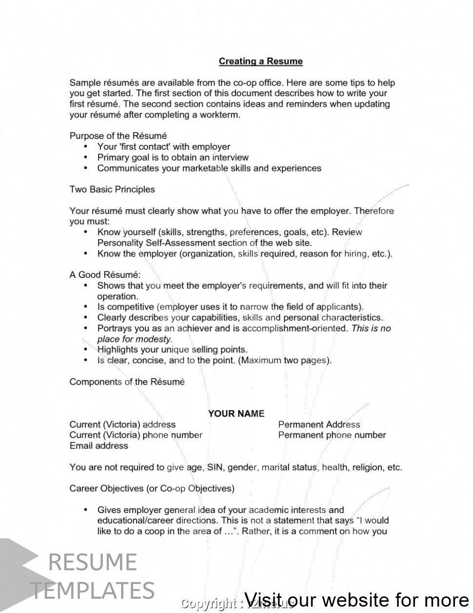 best free resume builder site 2020 in 2020 Good resume