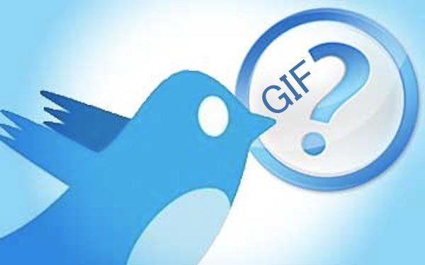 Twitter e le .GIF: un amore per il movimento - SocialDaily Italia