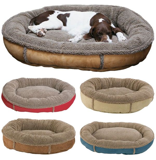 Make your pet comfortable in any room of the house by