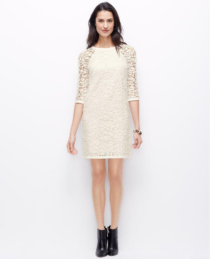 Lace Shift Dress Ann Taylor