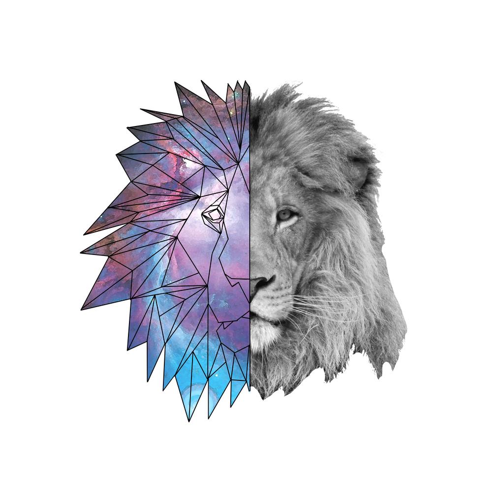 Geometric Galaxy Lion Geometric Lion Lion Lion Tattoo