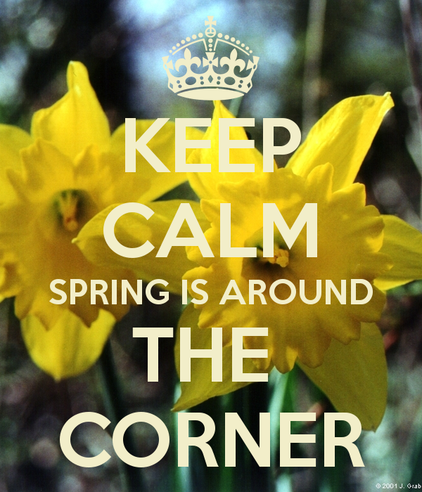 Image result for spring soon quotes