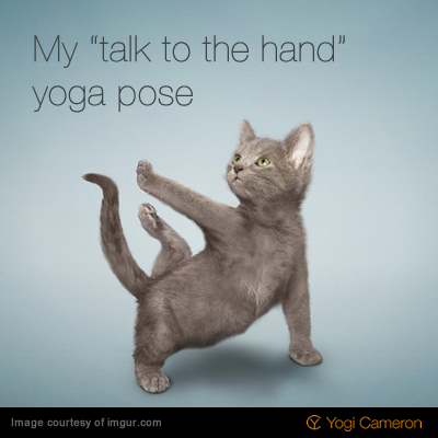 Pin By Karmicfit On Namaste Cats Funny Cat Photos Cat Yoga