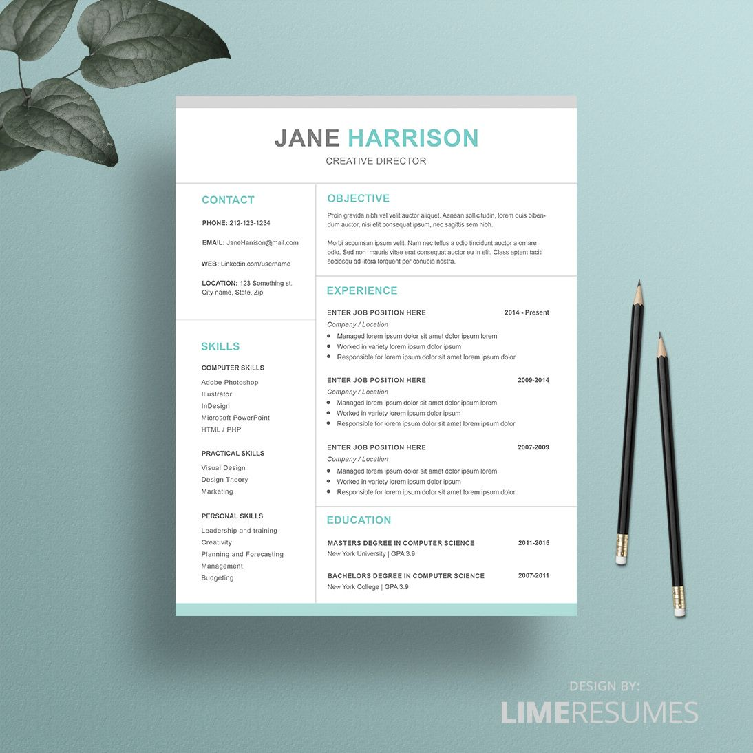Resume Templates For Pages Professional Resume Template  Professional Resume Template