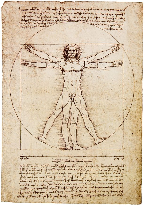 how to study anatomy | Anatomy | Pinterest | Italian renaissance ...
