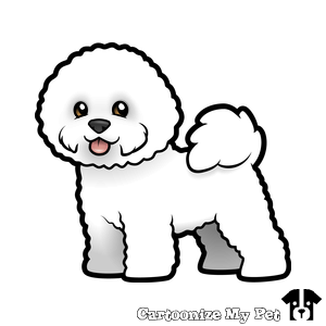 Cartoonize My Pet Poodle Drawing Bichon Frise Drawing Bichon