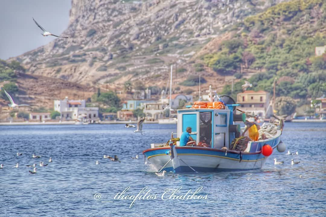 #kalymnos #island #aegean #sea #dodekanisa #boat #fisherman  #fishing #fish #work #gull #morning #calm #day #colors #hellas # #kalymnos #island #aegean #sea #dodekanisa #boat #fisherman  #fishing #fish #work #gull #morning #calm #day #colors #hellas # #aegeansea #kalymnos #island #aegean #sea #dodekanisa #boat #fisherman  #fishing #fish #work #gull #morning #calm #day #colors #hellas # #kalymnos #island #aegean #sea #dodekanisa #boat #fisherman  #fishing #fish #work #gull #morning #calm #day #co #aegeansea