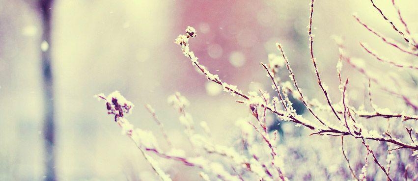 401772263718e91217063895ecf6971f Jpg 851 369 Facebook Cover Photos Vintage Winter Facebook Covers Cover Pics For Facebook