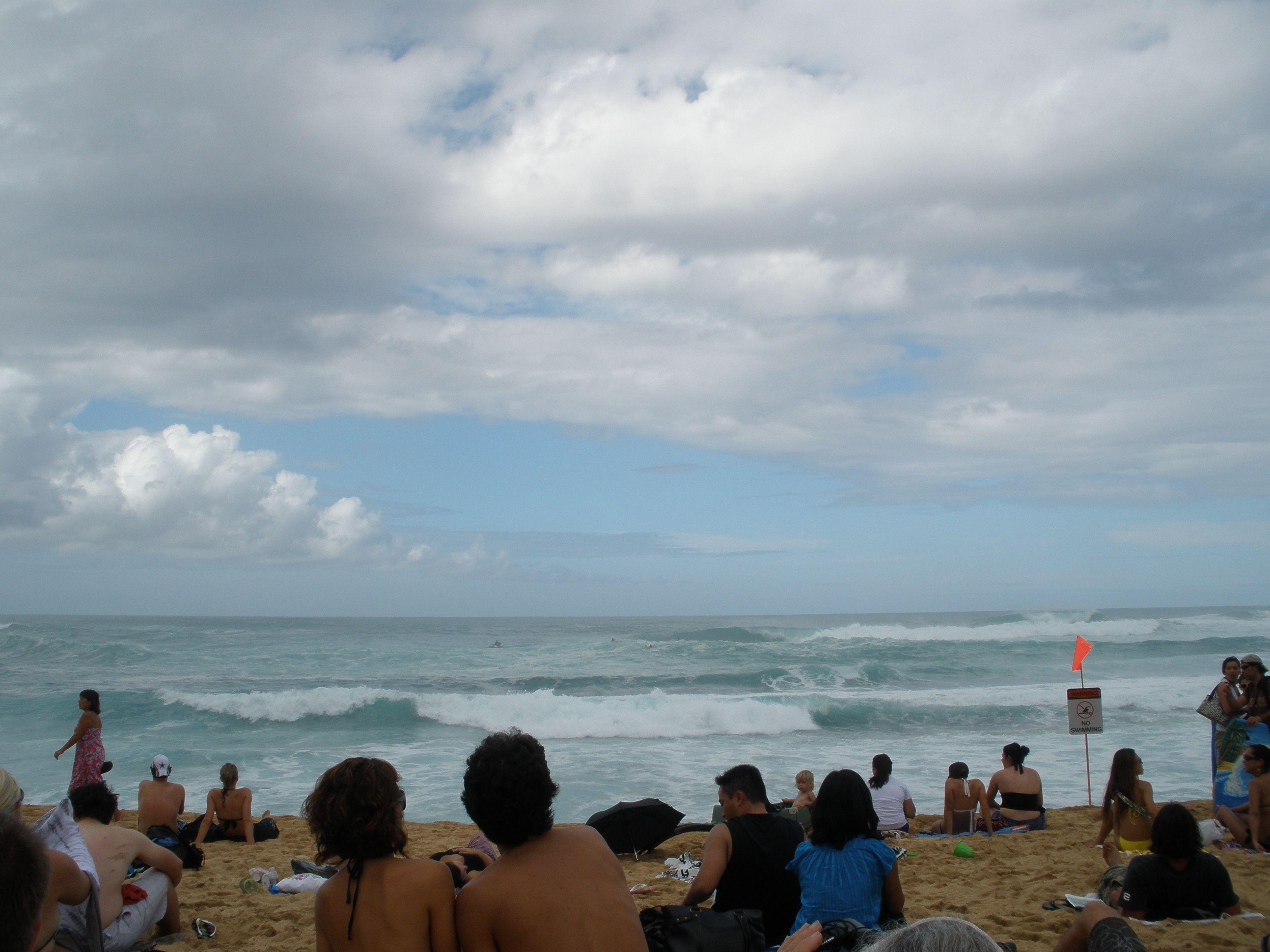 North Shore Honolulu x